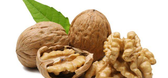 Орех – полезны не только ядра