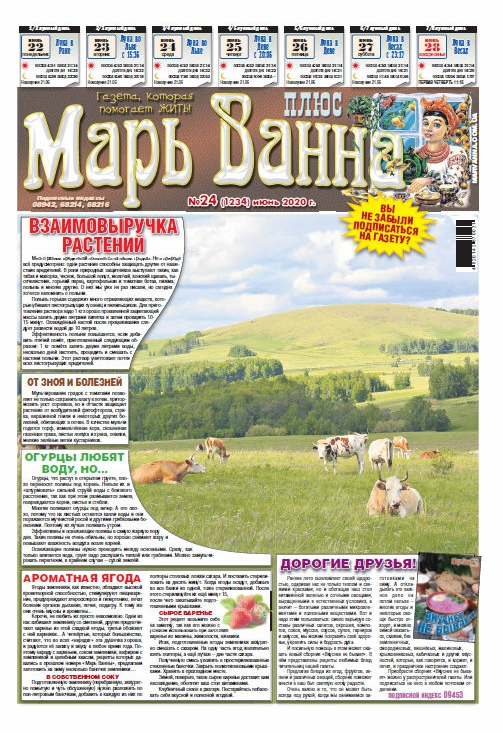 """Газета """"Марь Ванна"""" №24/2020"""