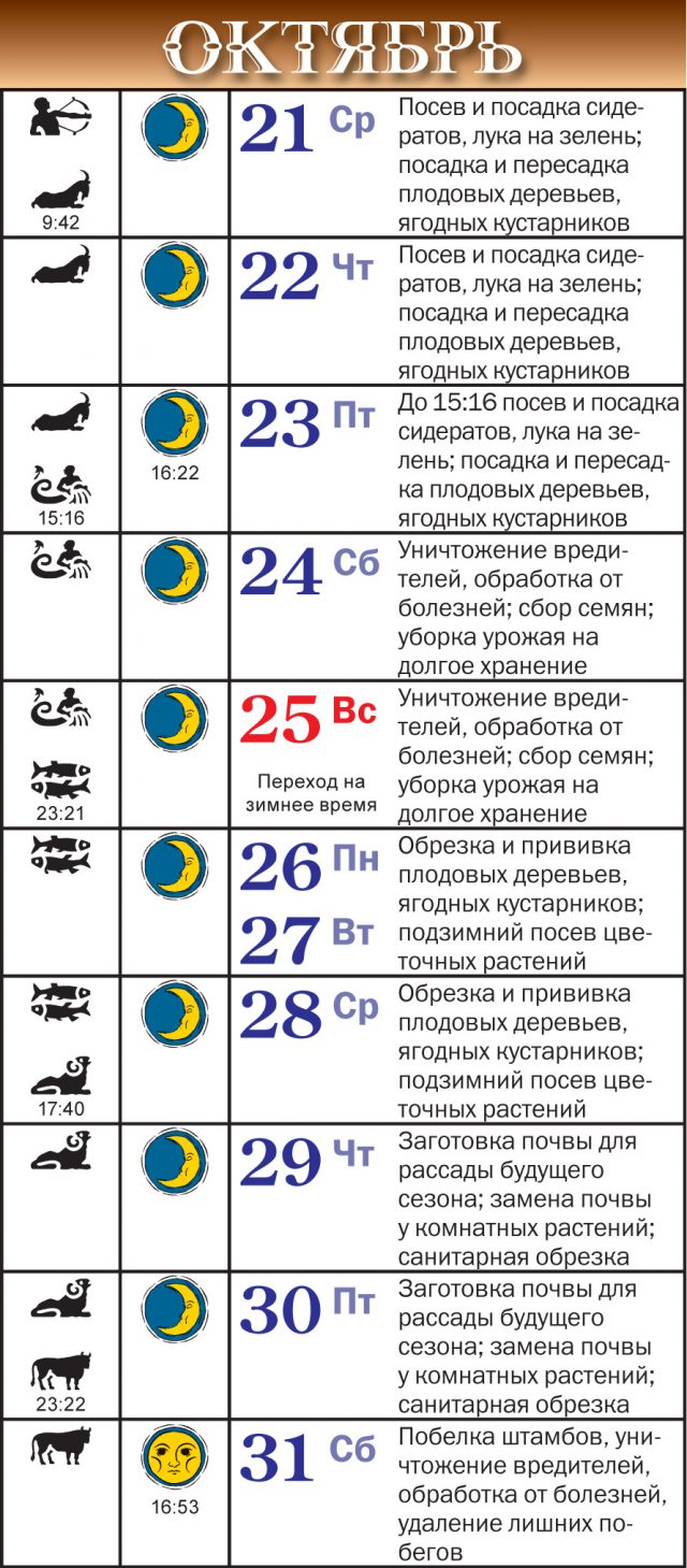 Лунный календарь на октябрь 2020 года